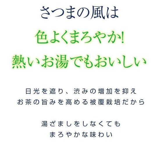 さつまの風1.jpg