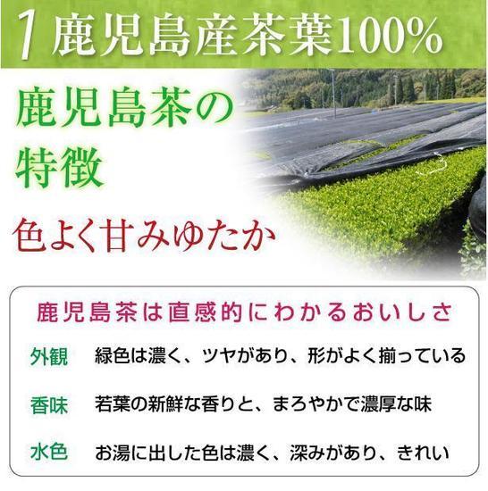 さつまの風3.jpg